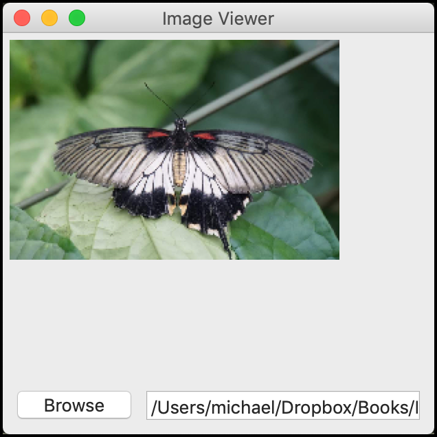 Viewing an Image in wxPython